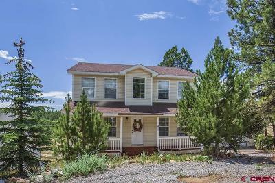 La Plata County Single Family Home For Sale: 210 Canyon Creek Trail