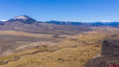 Gunnison Farm For Sale: 57564 U.s. Highway 50