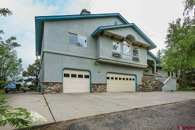 Durango Single Family Home For Sale: 130 Oak Valley Drive