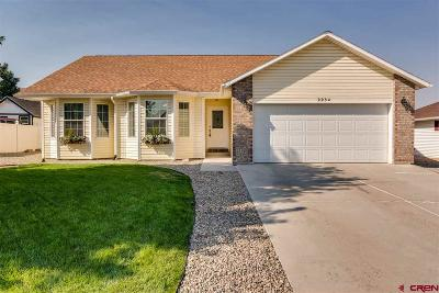 Montrose Single Family Home For Sale: 2234 American Way
