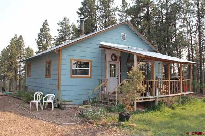 Durango Single Family Home For Sale: 307 Deer Trail Road