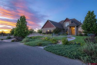 Montrose Single Family Home For Sale: 3164 Monte Vista Circle