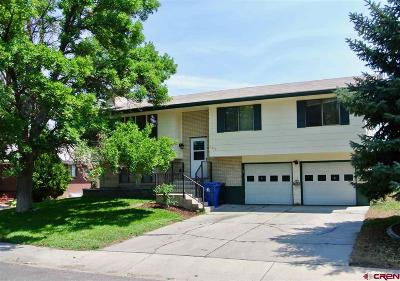 Montrose Single Family Home For Sale: 1525 Dover