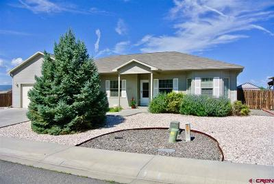 Montrose Single Family Home For Sale: 3267 Meadows Parkway