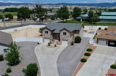 Montrose Single Family Home For Sale: 2811 Covington Way