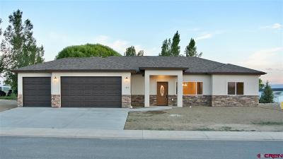 Montrose Single Family Home UC/Contingent/Call LB: 1802 Galaxy Drive