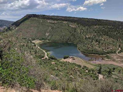Durango Residential Lots & Land For Sale: Cr 205
