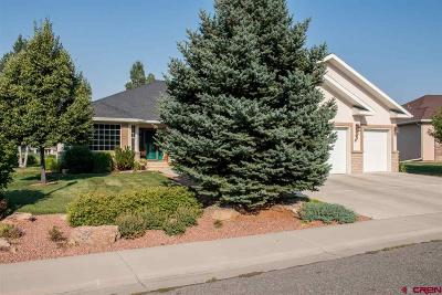 Montrose Single Family Home For Sale: 3813 Mount Hayden Drive