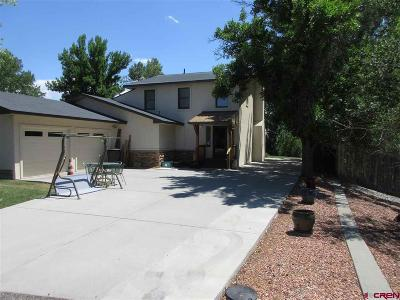 Montrose Single Family Home For Sale: 2724 Stellar Court