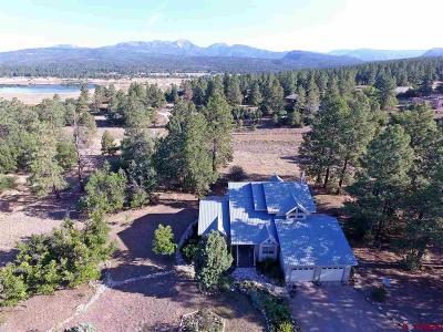 Durango Single Family Home For Sale: 40 S Elk Run