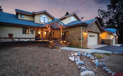 La Plata County Single Family Home For Sale: 425 Blue Ridge