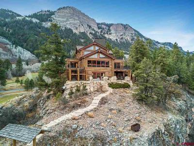 Durango Single Family Home UC/Contingent/Call LB: 110 Peregrine Drive