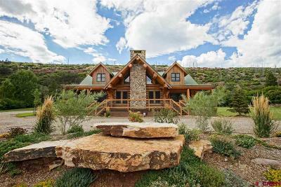 La Plata County Single Family Home For Sale: 5474 County Road 203