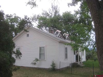 Montrose Single Family Home For Sale: 21238 Highway 550