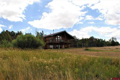 La Plata County Single Family Home For Sale: 120 Sundance Circle