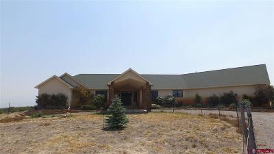 Montrose Single Family Home For Sale: 60500 V60 Trail
