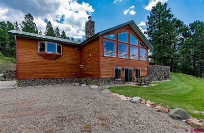 Pagosa Springs Single Family Home For Sale: 6163 N Pagosa Blvd