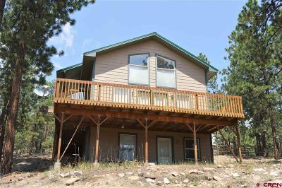 La Plata County Single Family Home For Sale: 526 Hilltop Drive
