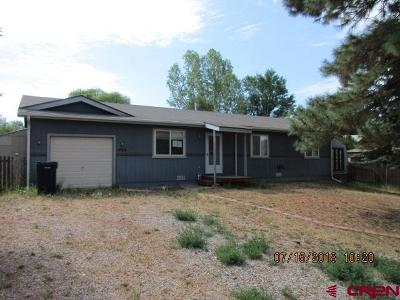 La Plata County Single Family Home For Sale: 1460 N Tamarack Drive