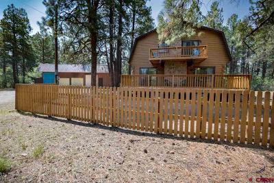 Pagosa Springs Single Family Home For Sale: 3700 County Road 600