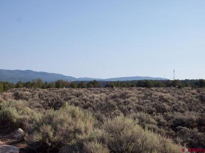 Cedaredge Residential Lots & Land For Sale: Cactus Park Road