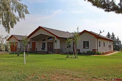 Cortez Single Family Home For Sale: 14160 Road 21.3
