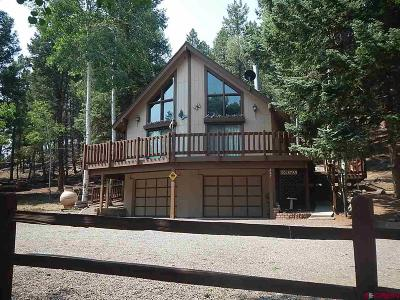 South Fork CO Single Family Home For Sale: $299,000