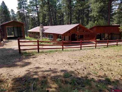 Pagosa Springs Mobile/Manufactured For Sale: 38964 Road P