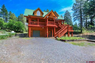 Pagosa Springs Single Family Home For Sale: 162 Jj Junction