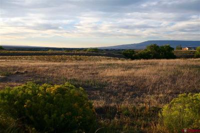 Olathe Residential Lots & Land For Sale: High View Court
