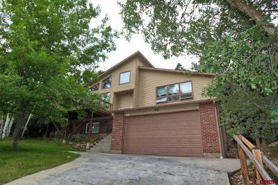 La Plata County Single Family Home UC/Contingent/Call LB: 230 Valley View Circle