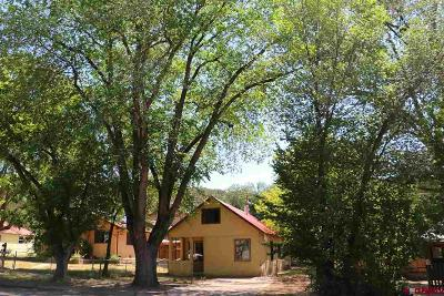 La Plata County Single Family Home For Sale: 226 E 7th Avenue