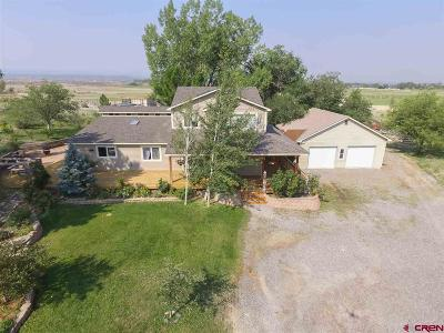 Montrose Single Family Home For Sale: 17083 6725 Road