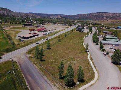 Ridgway Residential Lots & Land For Sale: 11 Palomino Trail