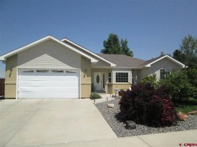 Montrose Single Family Home UC/Contingent/Call LB: 2325 Mead Lane