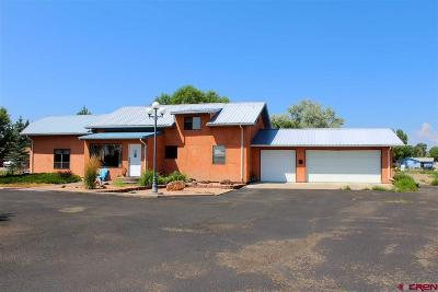 Alamosa Single Family Home UC/Contingent/Call LB: 580 White Pine Drive