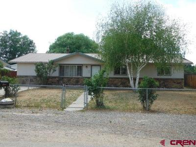 Delta CO Single Family Home For Sale: $169,000