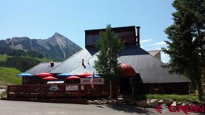 Mt. Crested Butte CO Commercial For Sale: $499,000
