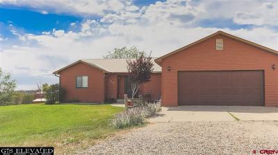 Durango Single Family Home For Sale: 926 Sundance Circle