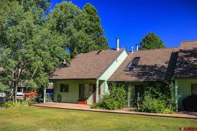 Pagosa Springs Condo/Townhouse UC/Contingent/Call LB: 269 Cloud Cap #D-1