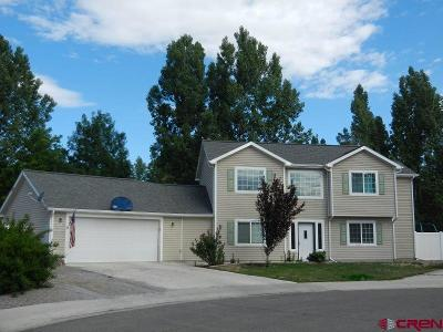 Montrose Single Family Home For Sale: 809 Mule Deer Court