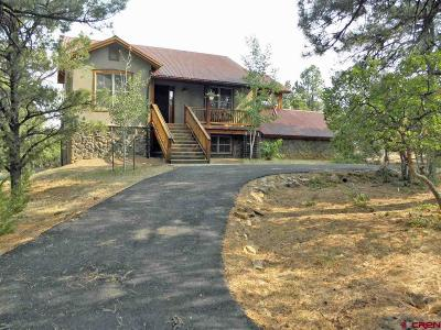 Ouray County Single Family Home For Sale: 380 S Badger Trail