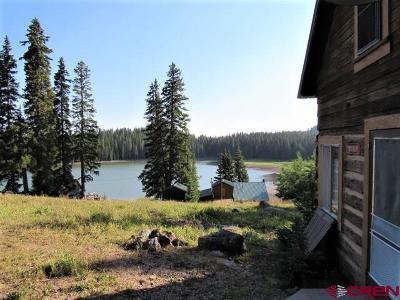 Cedaredge Single Family Home For Sale: 21739 Baron Lake Drive