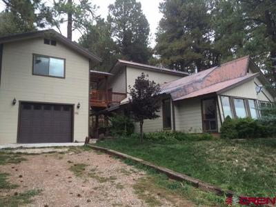 La Plata County Single Family Home For Sale: 195 Vallecito Drive