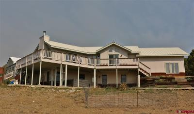 La Plata County Single Family Home For Sale: 140 Belle Starr Drive