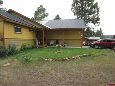 Pagosa Springs Single Family Home For Sale: 274 Sundown Circle