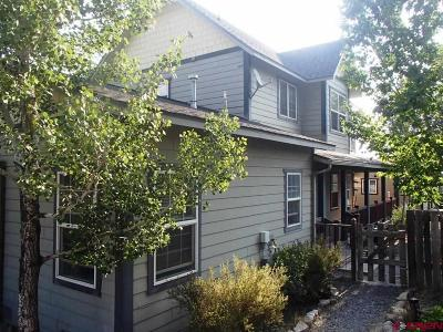 Ouray County Single Family Home For Sale: 260 S Amelia Street