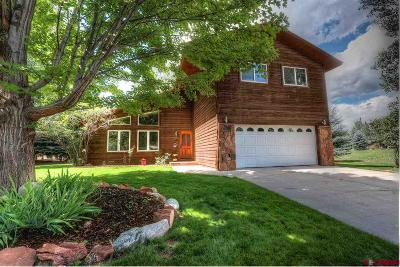 La Plata County Single Family Home For Sale: 101 Long Hollow Lane