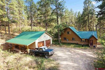 La Plata County Single Family Home For Sale: 774 Blue Ridge
