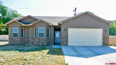 Montrose Single Family Home For Sale: 521 Opal Drive